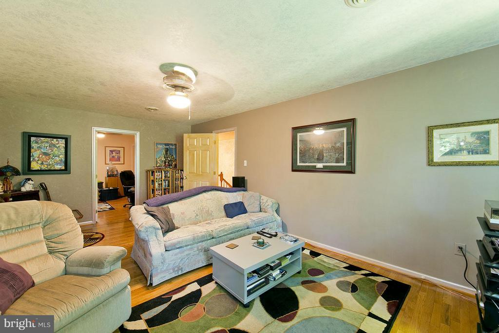 Bedroom or Movie Room - 3970 PANHANDLE RD, FRONT ROYAL