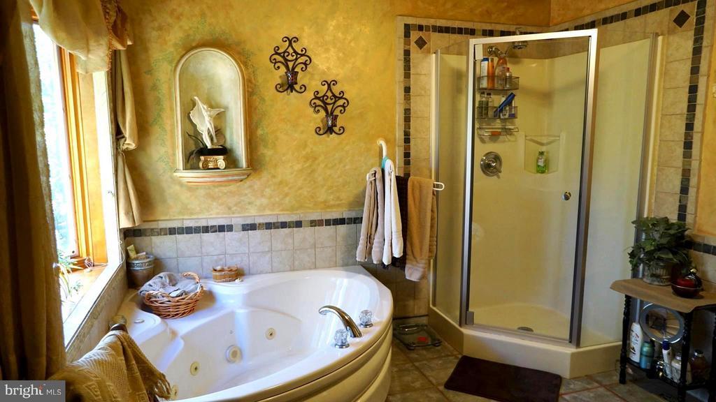 Master Bath, Acrylic sensor touch Spa Tub - 3970 PANHANDLE RD, FRONT ROYAL