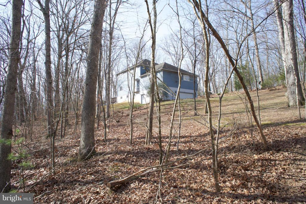 5 Acre Site-Back Yard View - 3970 PANHANDLE RD, FRONT ROYAL