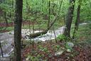 Creek behind the house on property - 3970 PANHANDLE RD, FRONT ROYAL