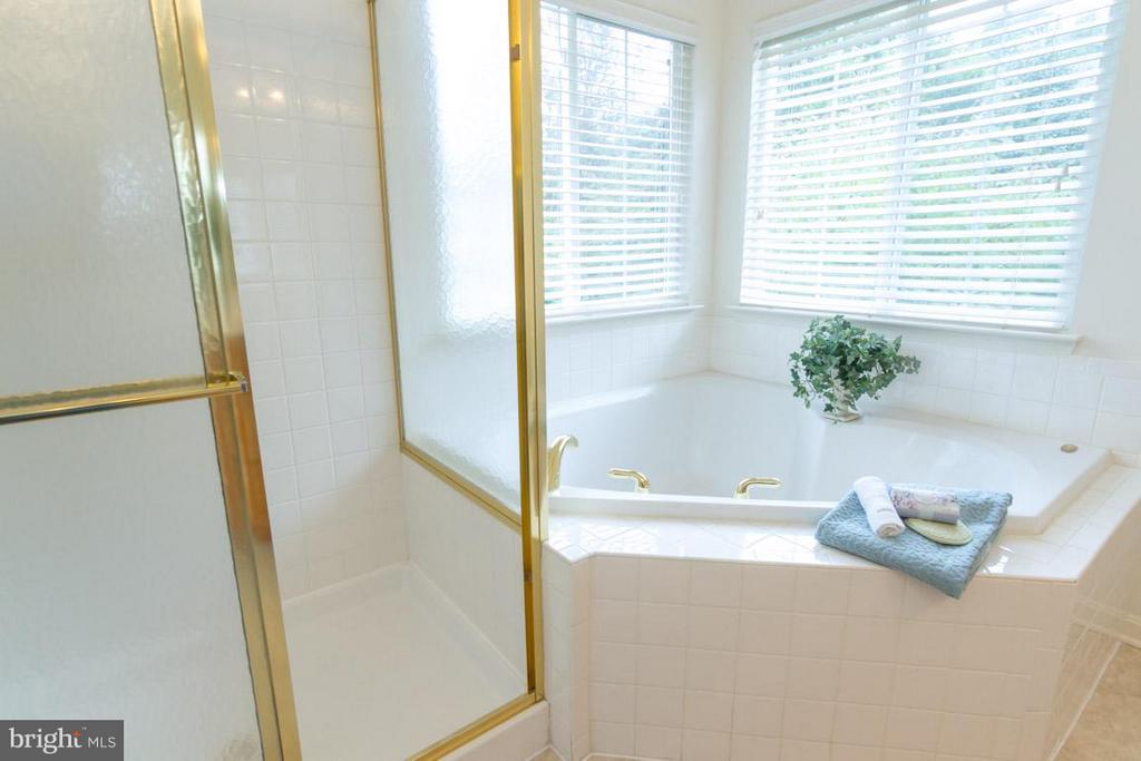 Owners Suite soaking tub and separate shower - 17 HEATHERBROOK LN, STAFFORD