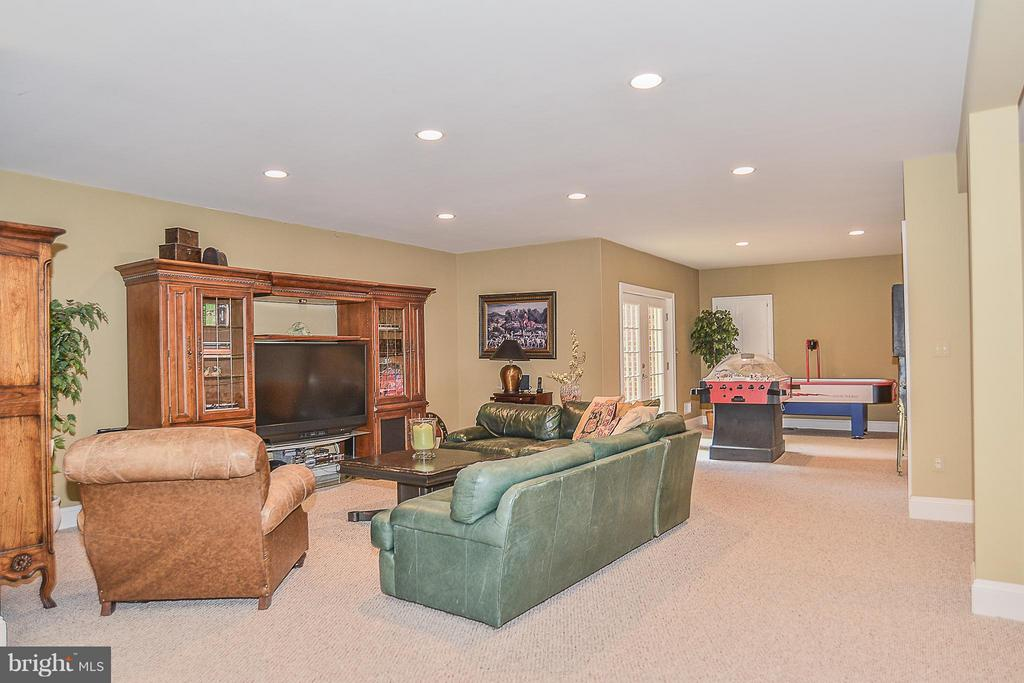 Lower Level Rec Room - 41727 PUTTERS GREEN CT, LEESBURG