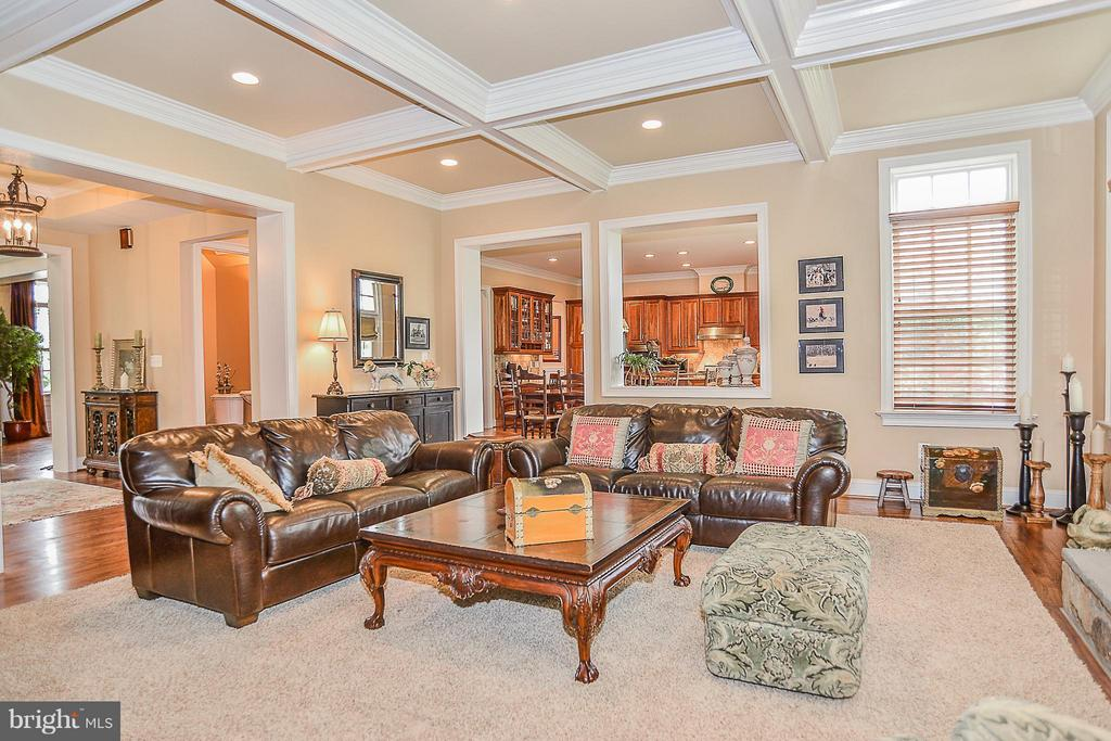 Family Room - 41727 PUTTERS GREEN CT, LEESBURG