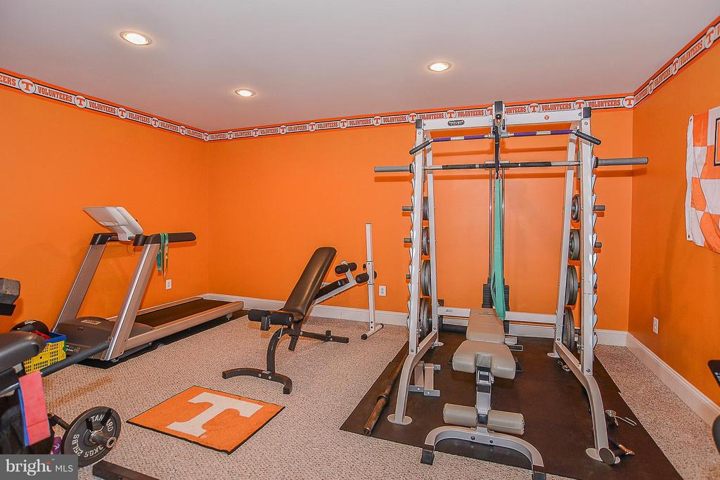 Lower Level Workout Room - 41727 PUTTERS GREEN CT, LEESBURG