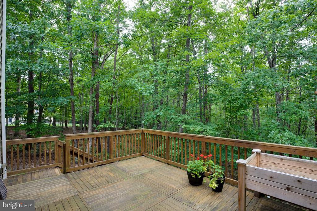 Deck off kitchen/family room - 13208 CHANDLER CT, FREDERICKSBURG