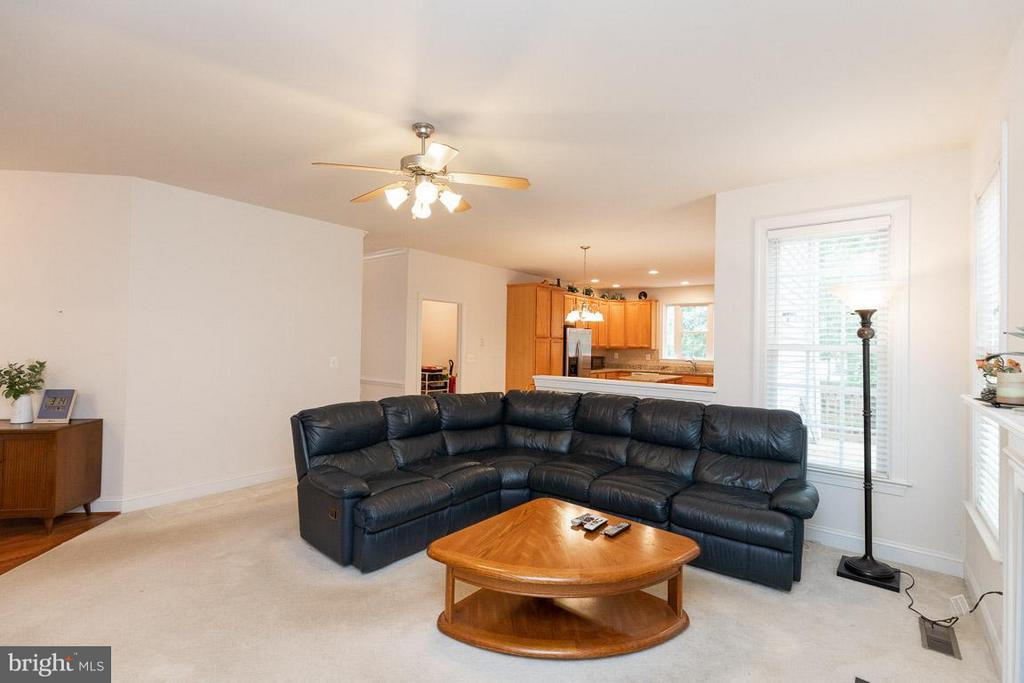 Family Room. - 13208 CHANDLER CT, FREDERICKSBURG