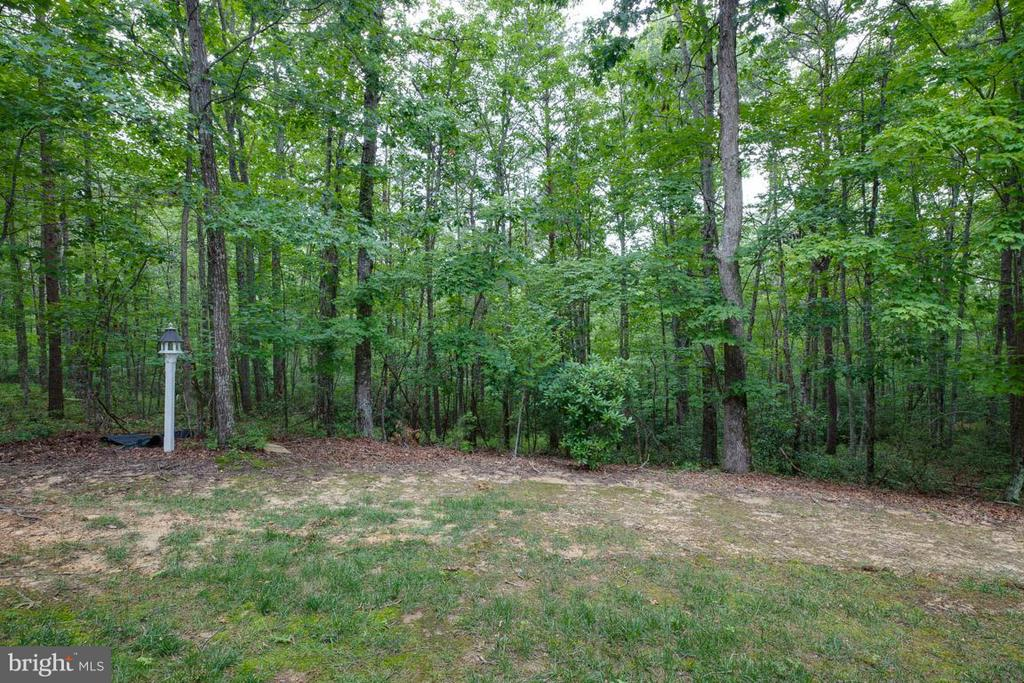 Backyard - 13208 CHANDLER CT, FREDERICKSBURG