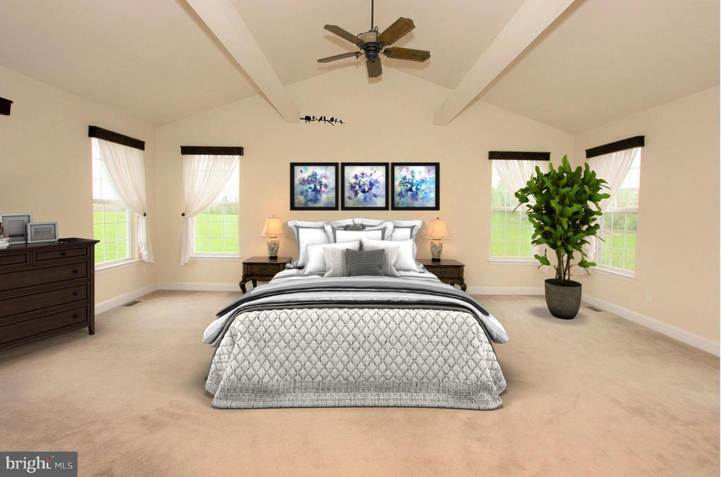 Dreamy main level master suite - 38651 RICKARD RD, LOVETTSVILLE