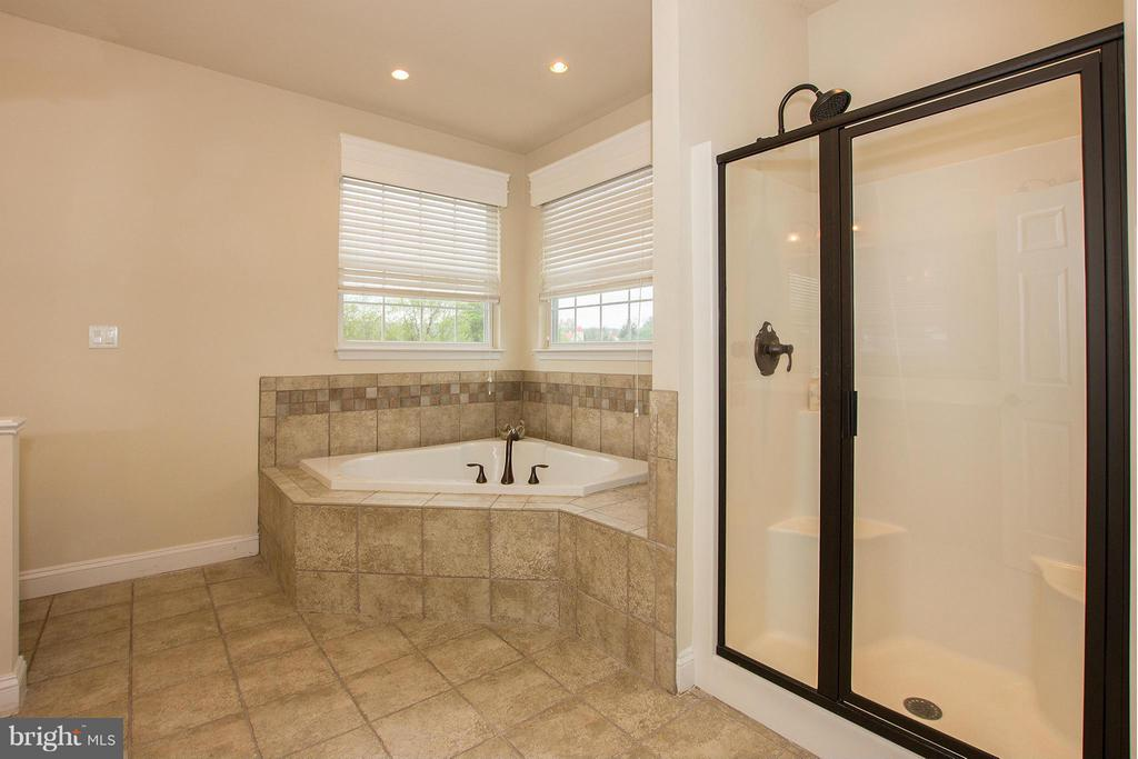 Gorgeous tiled ensuite bath - 38651 RICKARD RD, LOVETTSVILLE