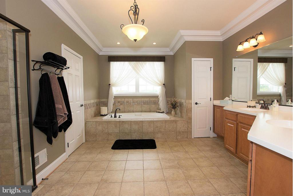 Ensuite bath with soaking tub and separate shower - 38651 RICKARD RD, LOVETTSVILLE