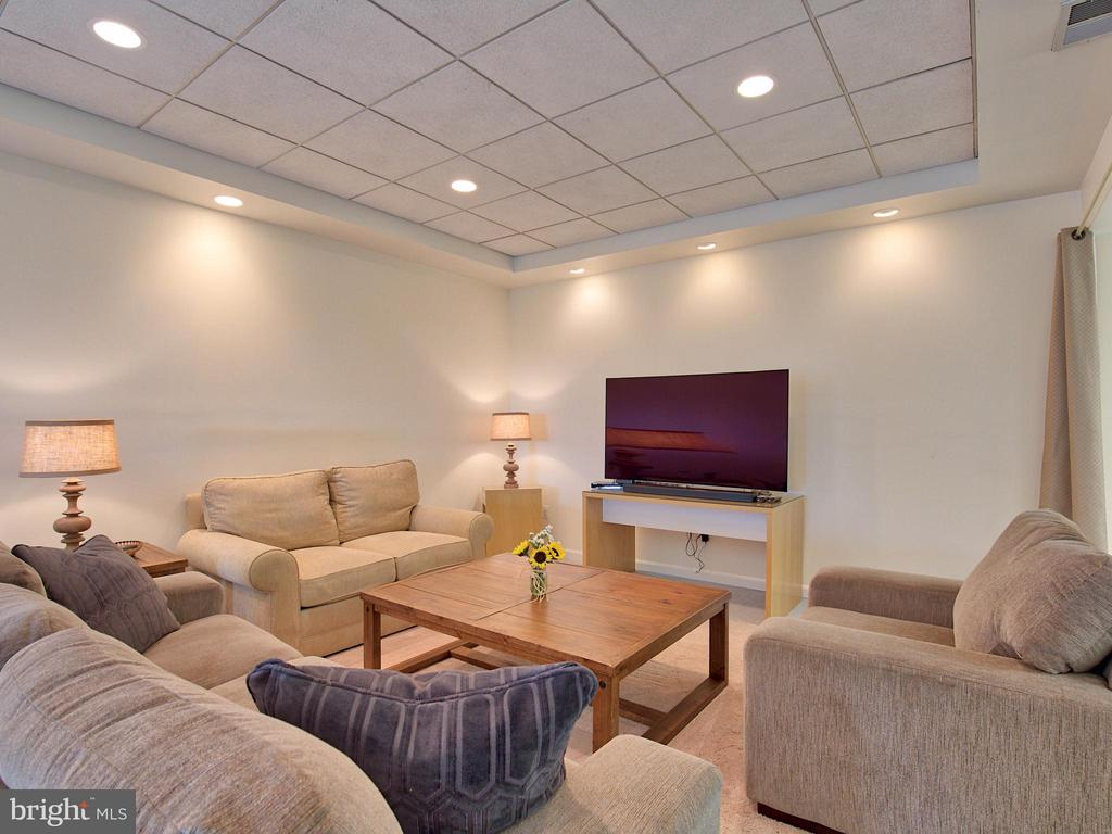 Large Basement Rec Rooms - 17950 STONELEIGH DR, ROUND HILL