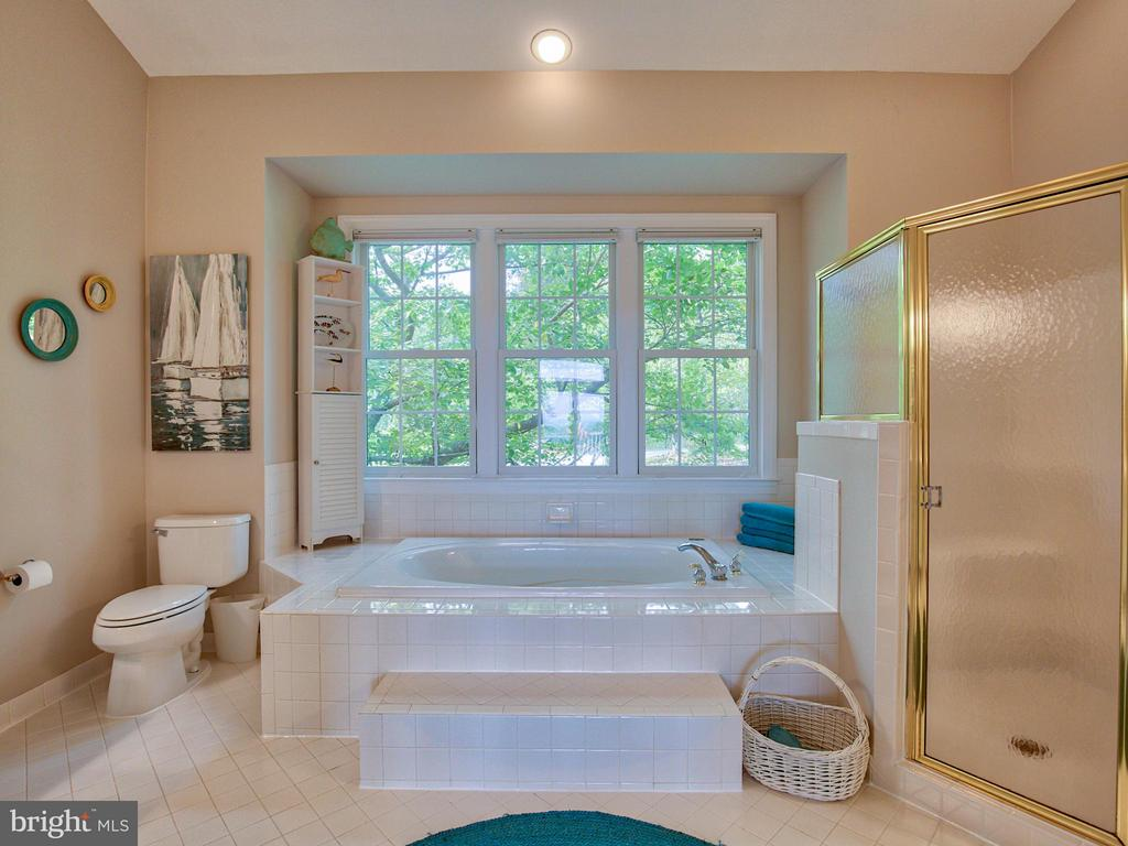 Large Tub, Separate Shower, Fresh Grout and Paint - 17950 STONELEIGH DR, ROUND HILL