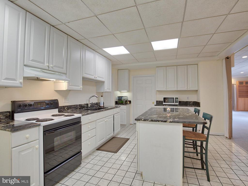 Full Sized In-Law Suite Kitchen - 17950 STONELEIGH DR, ROUND HILL