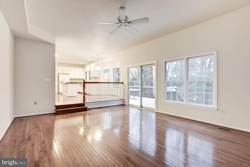 Family Room - 20941 RUBLES MILL CT, ASHBURN