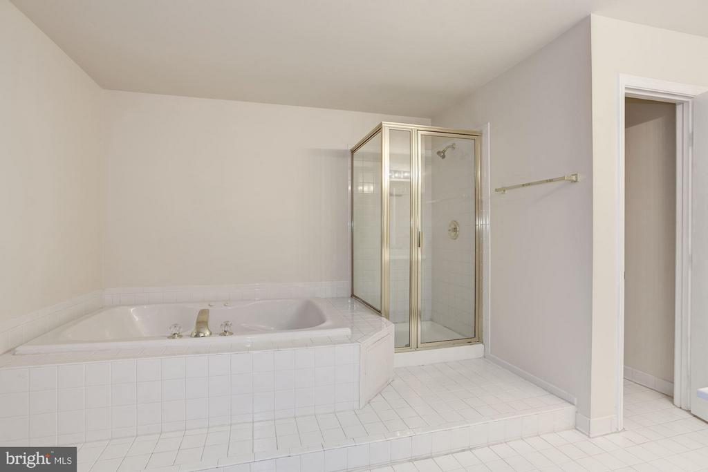 Master Bathroom - 20941 RUBLES MILL CT, ASHBURN