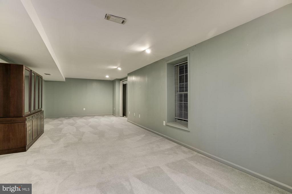 Finished Walk-out Basement - 20941 RUBLES MILL CT, ASHBURN
