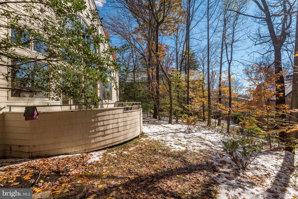 Mature trees provide privacy! - 11581 GREENWICH POINT RD, RESTON