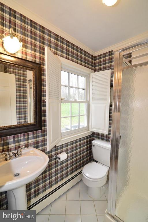 Bath (Master) New windows - 3072 SWIFT SHOALS RD, BOYCE