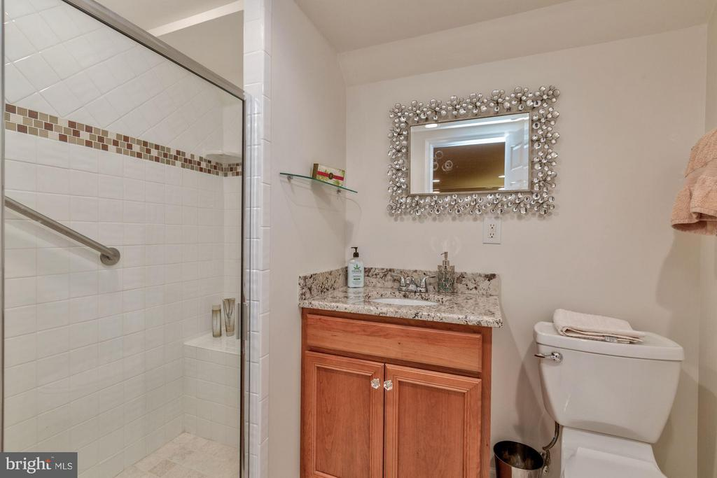 Full Bathroom off Family Room - 215 PRINCESS ST, ALEXANDRIA