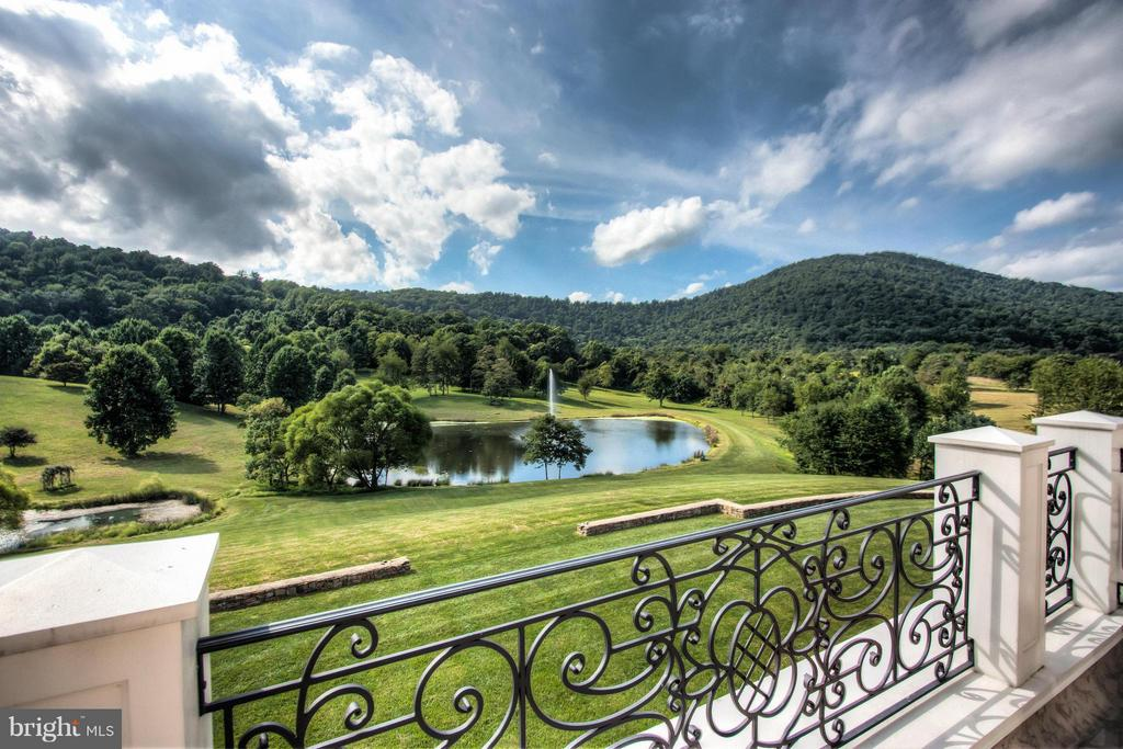 View from Master Bath Terrace - 12410 COVE LN, HUME