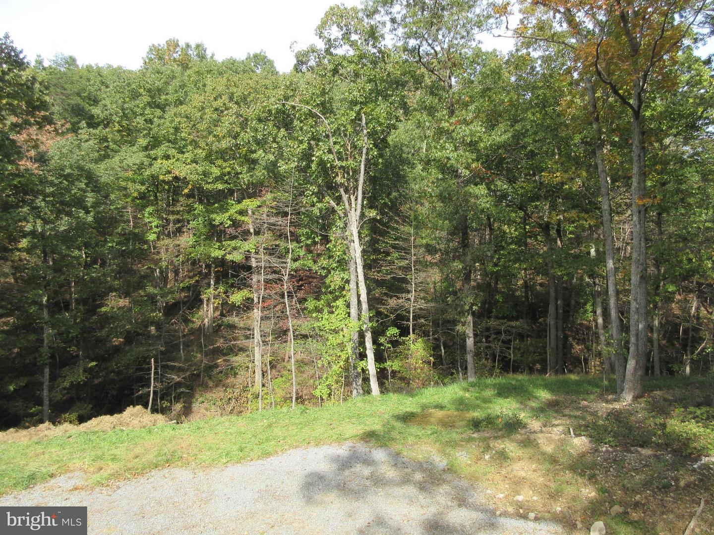 Land for Sale at 247 Spring Hollow Rd Front Royal, Virginia 22630 United States