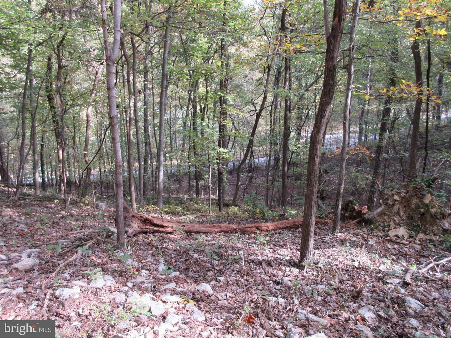Land for Sale at 437 Lake Front Royal, Virginia 22630 United States