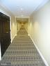 Carpeted Hallways are Very Quiet and Clean - 485 HARBOR SIDE ST #306, WOODBRIDGE