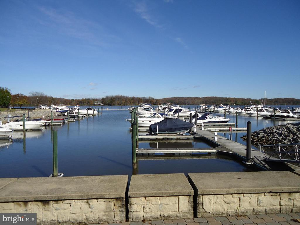 Water Access to Potomac River - Under 5 Minutes - 485 HARBOR SIDE ST #306, WOODBRIDGE