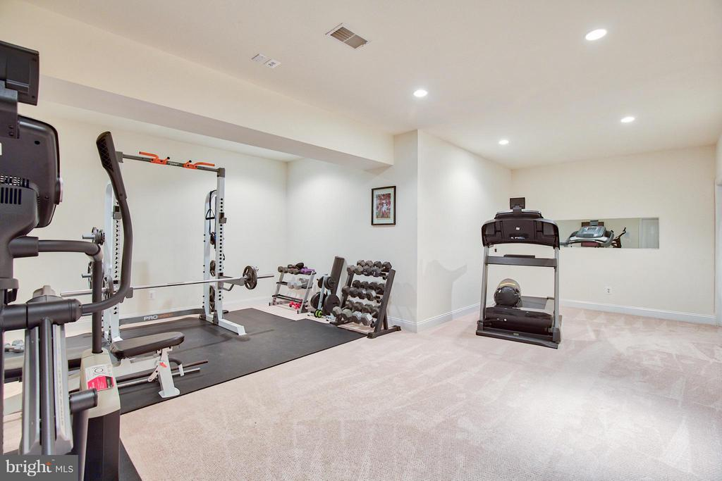 Lower Level Gym - 17276 SIMPSON CIR, PAEONIAN SPRINGS