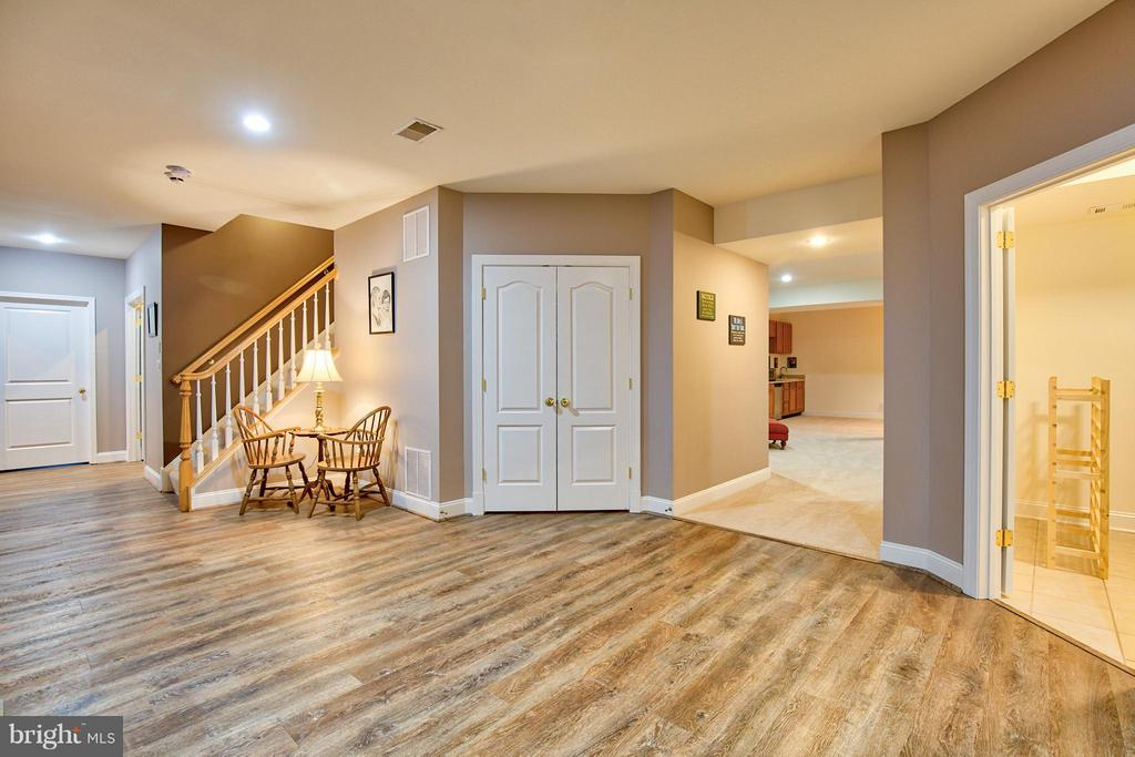 Lower Level - 17276 SIMPSON CIR, PAEONIAN SPRINGS