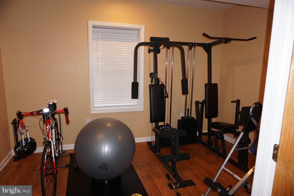 Gym in the basement - 5311 AUSTRA PL, WOODBRIDGE