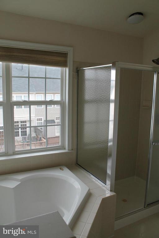 Bath (Master) - 21874 SCHENLEY TER, ASHBURN