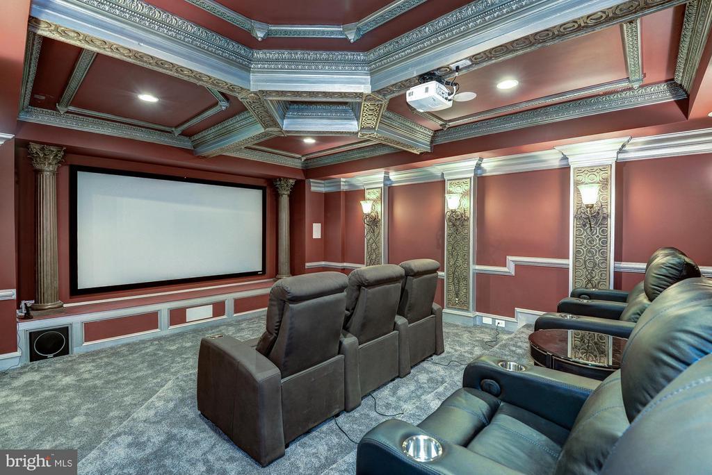 Cinema - 938 PEACOCK STATION RD, MCLEAN
