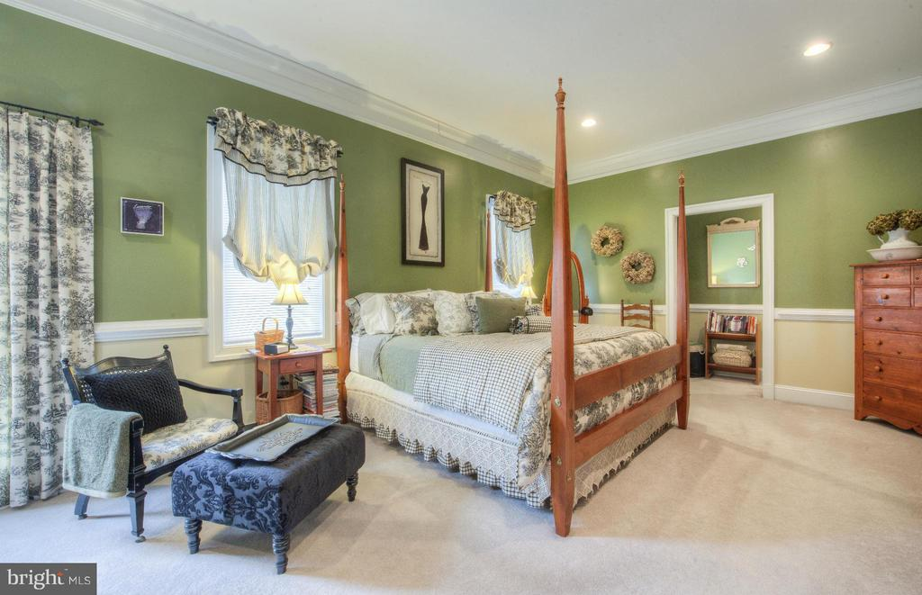 Master Bedroom Main level with luxurious bathroom - 254 SPOTTED TAVERN RD, FREDERICKSBURG