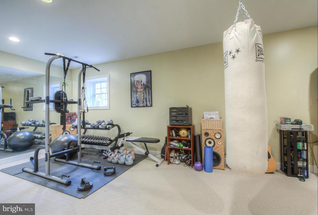 Exercise Room, Office, tucked away for you. - 254 SPOTTED TAVERN RD, FREDERICKSBURG