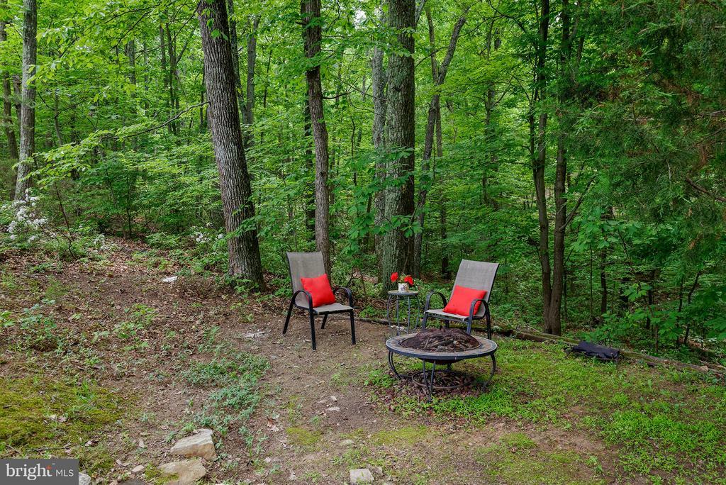 Cozy area in the woods - 39367 SADDLERIDGE LN, ALDIE