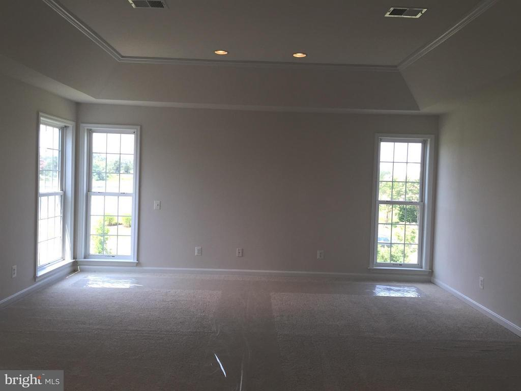 Master bedroom w/tray ceiling - 25667 CABIN POINT CT, CHANTILLY