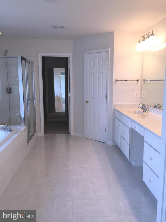 Sunny Master Bathroom - 25667 CABIN POINT CT, CHANTILLY
