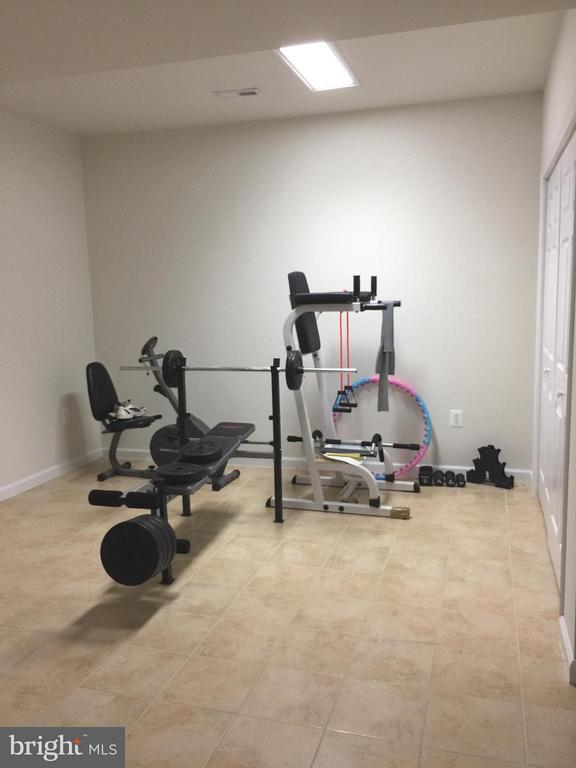 Gym in Lower level - 25667 CABIN POINT CT, CHANTILLY