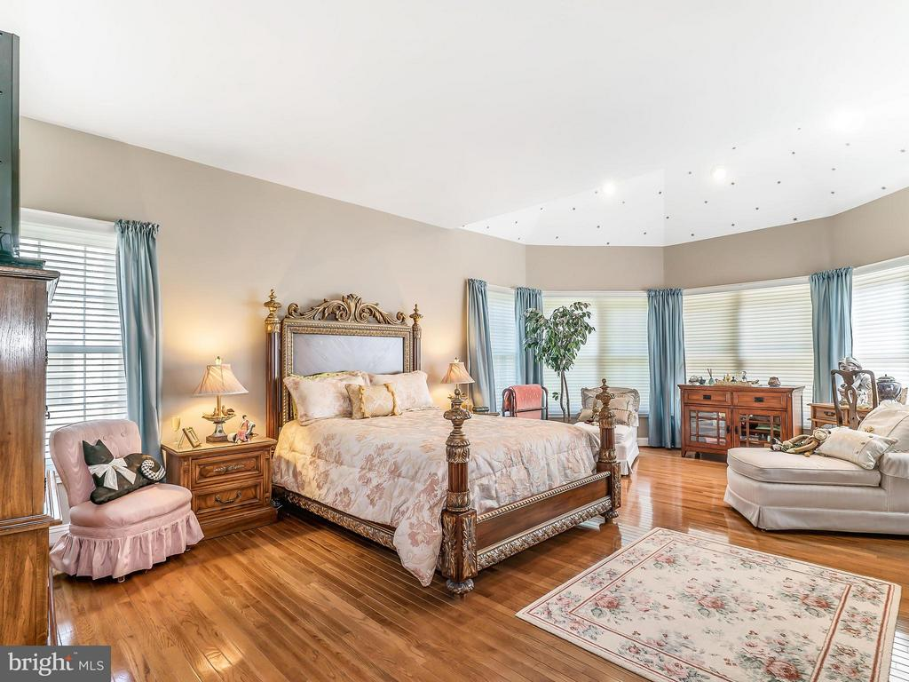 Spacious Master Bedroom - 14037 WEEPING CHERRY DR, ROCKVILLE
