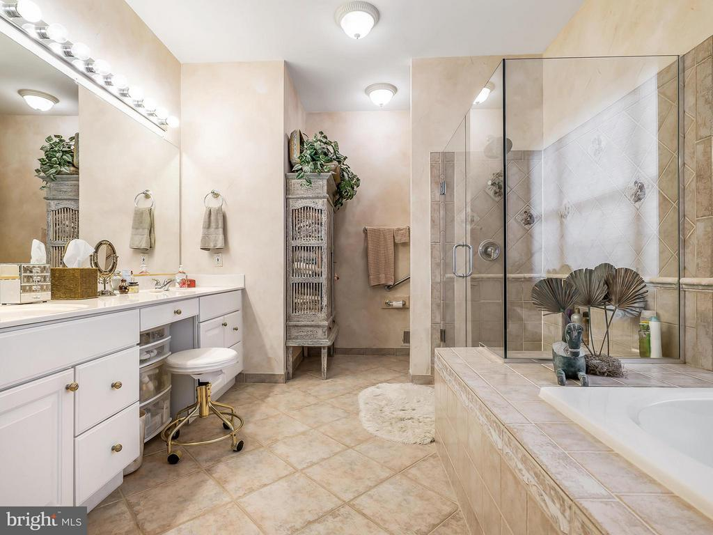 Beautiful Master Bath, All the Perks - 14037 WEEPING CHERRY DR, ROCKVILLE
