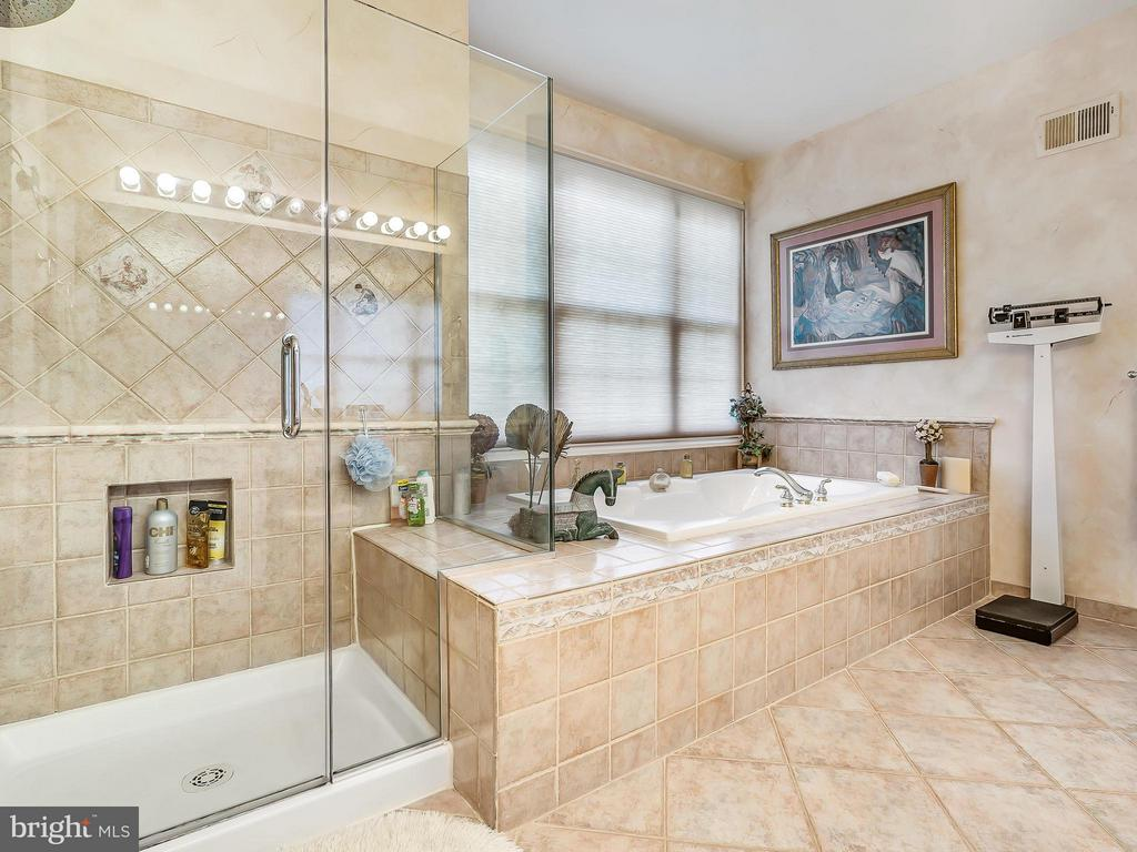 Master Bath - 14037 WEEPING CHERRY DR, ROCKVILLE