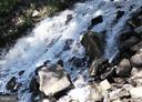 Waterfall on the River - 95 HERON LN, OCCOQUAN