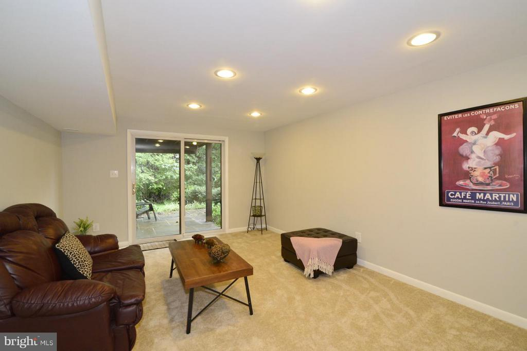 Basement - 2259 CEDAR COVE CT, RESTON