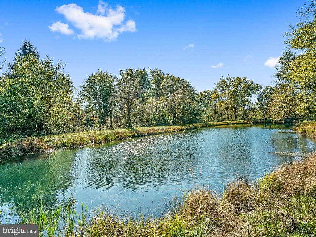 Stocked, Spring Fed 1 Acre Pond - 35175 SNICKERSVILLE TPKE, ROUND HILL