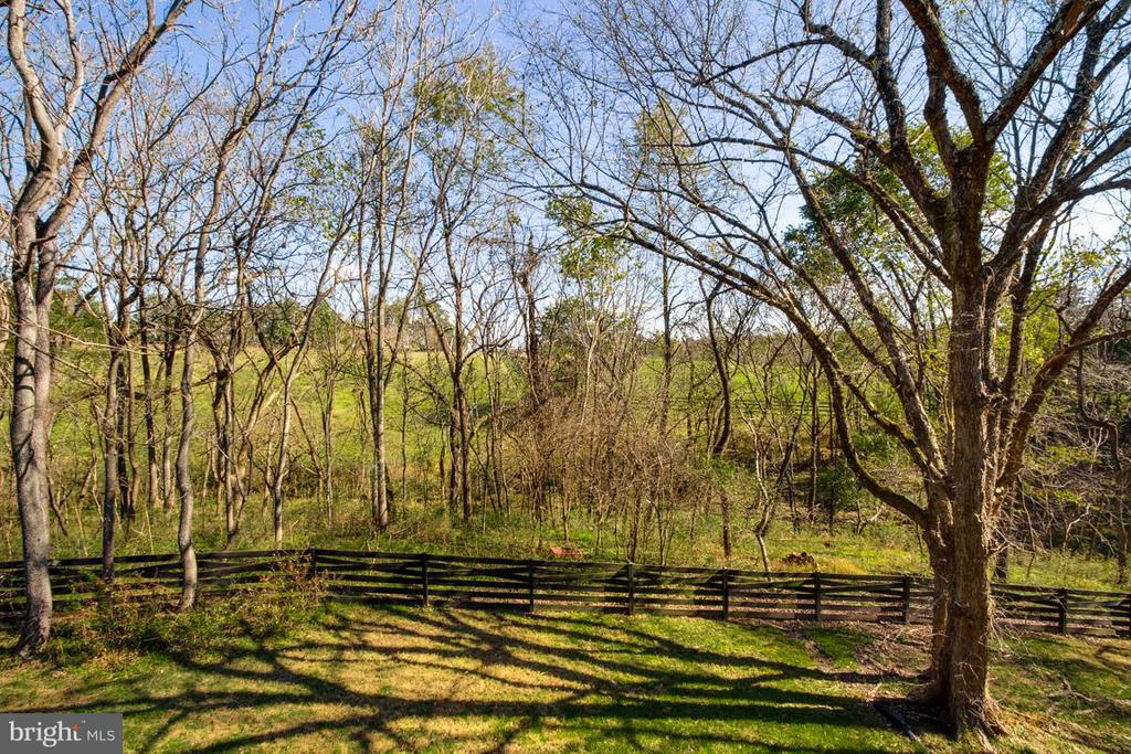 View - 20652 ST LOUIS RD, PURCELLVILLE