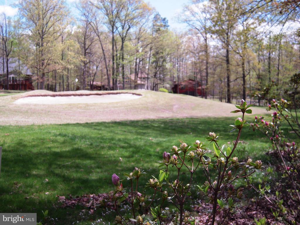 View of Fairway from House - 110 SAND TRAP LN, LOCUST GROVE