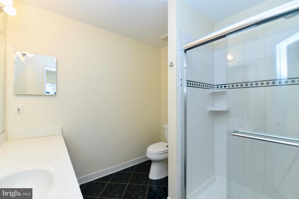 Bath (Master) - 43172 LAWNSBERRY SQ, ASHBURN