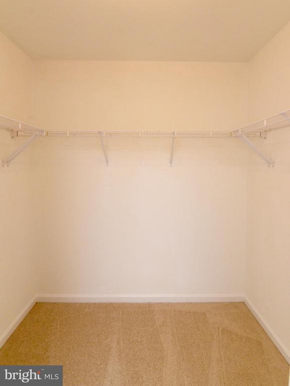 Large Master Closet - 43172 LAWNSBERRY SQ, ASHBURN