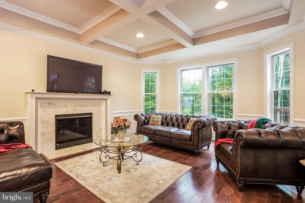 Family Room - 4708 MONTGOMERY ST, ANNANDALE
